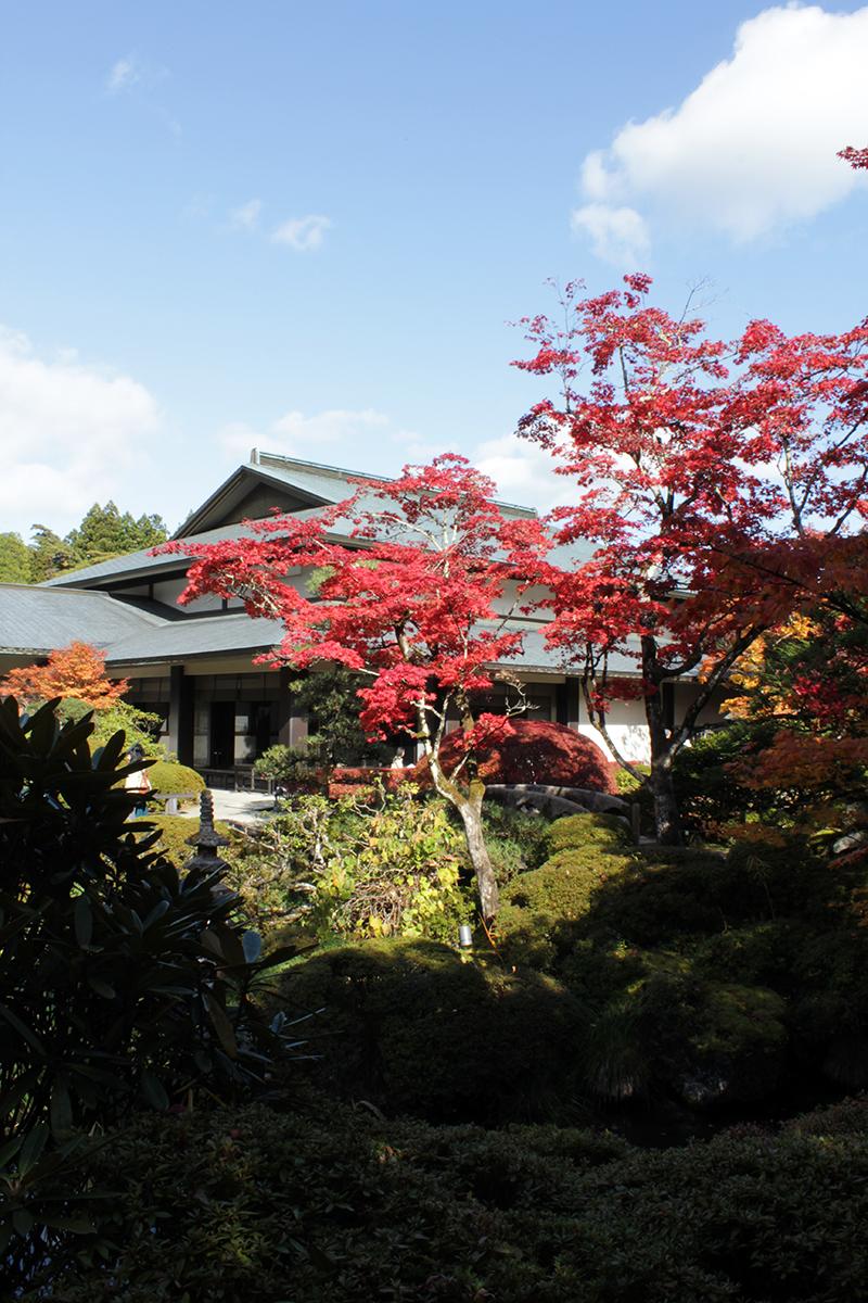 Día 4. Nikko