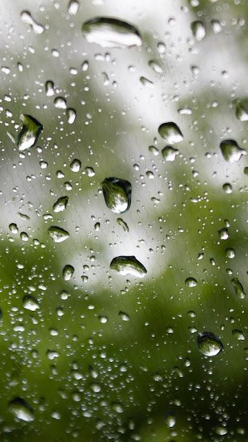 Wallpaper water drops on glass free Hd