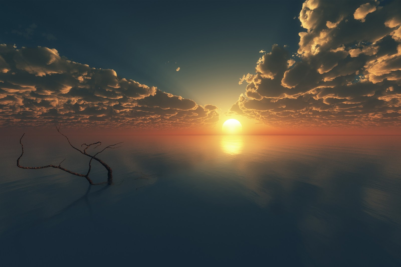 Cinema Wallpapers With Quotes Sunset Photography Hd Wallpapers High Definition