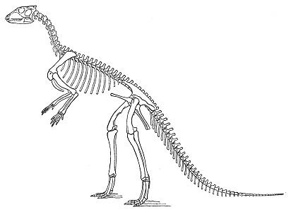 Hypsilophodon Dinozoru Hakkında Bilgi