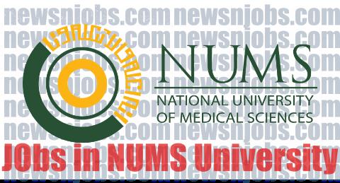 Teaching Jobs 2020 November NUMS University