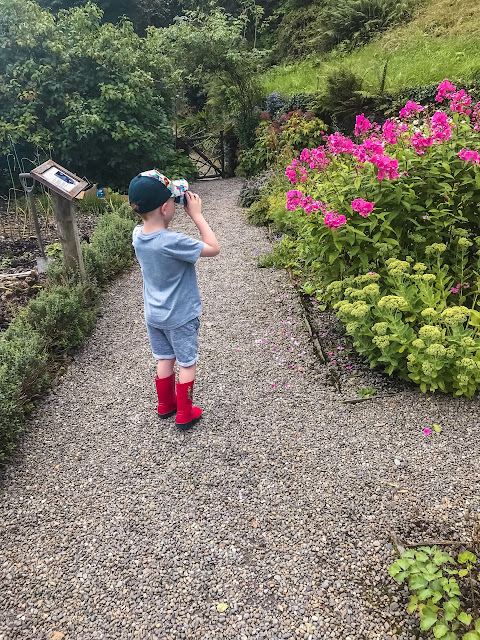 Little boy looking through binoculars across a garden