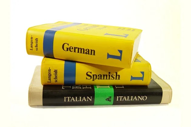 Which Language You Should Learn?