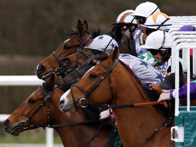 horse racing, sky racing, sky bet,