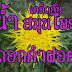 น้ำดอกคำฝอยช่วยลดไขมัน บำรุงหัวใจ ลดระดับน้ำตาลในเลือดได้ ชาดอกคำฝอยทำเองได้ง่าย ๆ Safflower