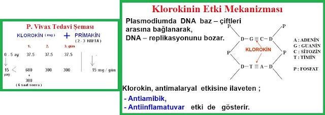 sıtma tedavisinde kullanılan klorokin primakin gibi ilaçlar korona virüs tedavisinde kullanılıyor