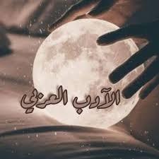 الأدب العربي في العناصر الأدبية