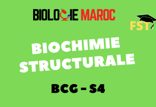 Biochimie Structurale BCG S4 : Cours+TD+EXAMENS PDF