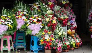 Taman bunga di thailand