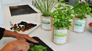 Regalos jardineros. Kits de cultivo en casa