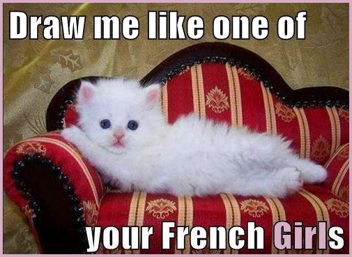 "Cute white kitty • Cat MEME • ""Draw me like one of your French girls"""