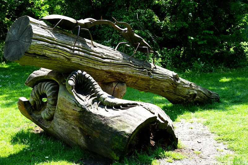 The Stag Beetles - Lee Valley Sculpture Trail