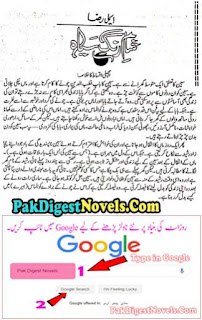 Shaam Rung Siyah Episode 14 Last By Aimal Raza Urdu Novel Free Download Pdf