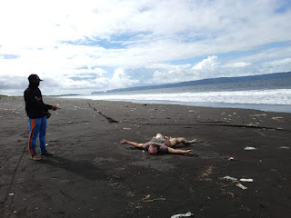 Mayat mr  X Ditemukan Membusuk di Pantai Talangsari