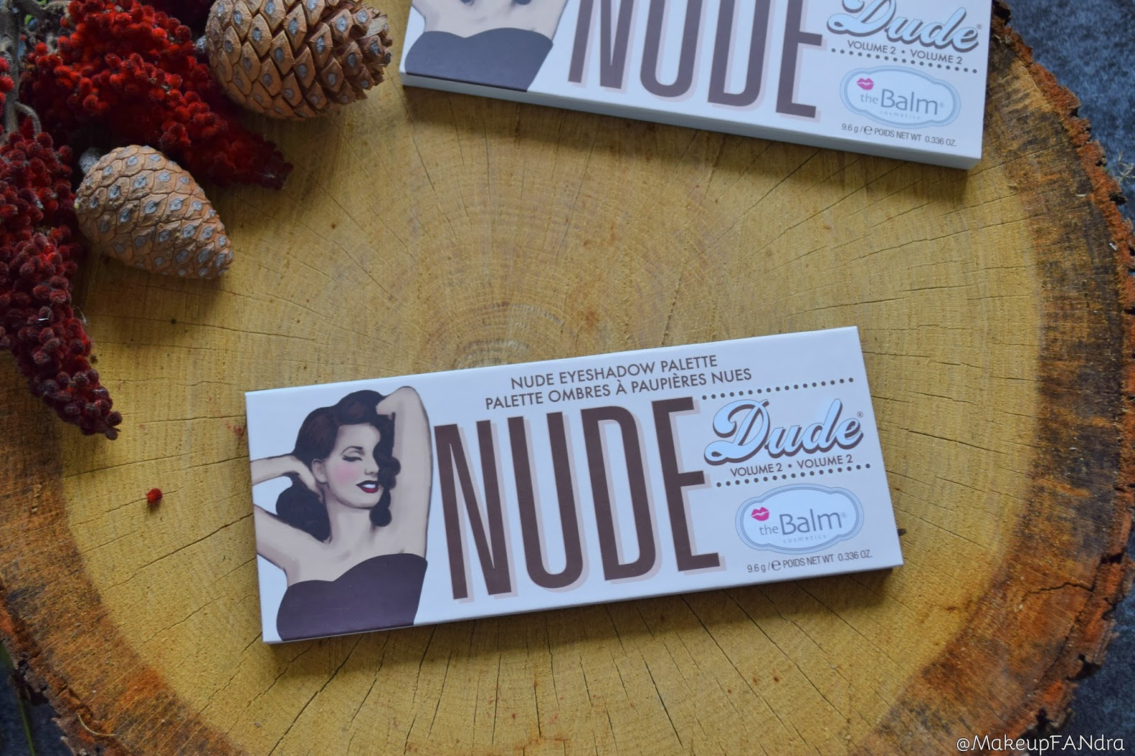 The-Balm-Nude-Dude-paleta-sjenila