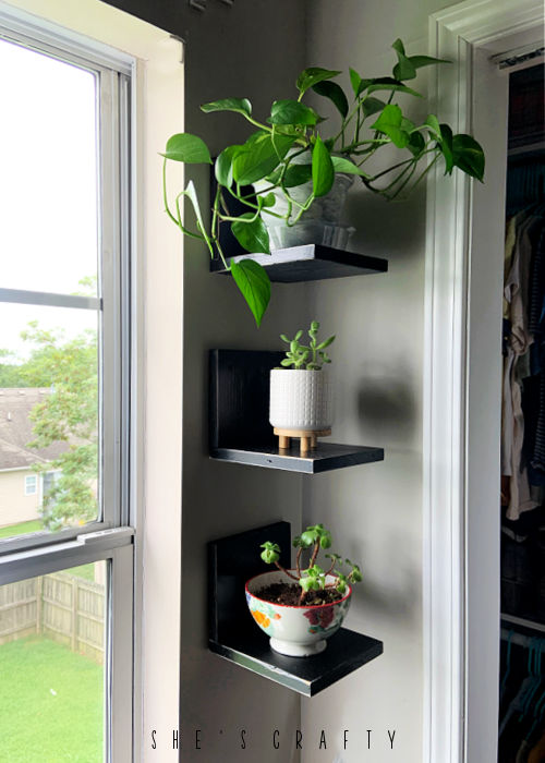 plant shelves hanging on wall
