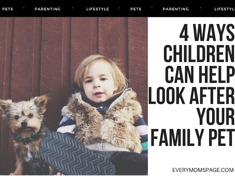 4 ways children can help look after your family pet