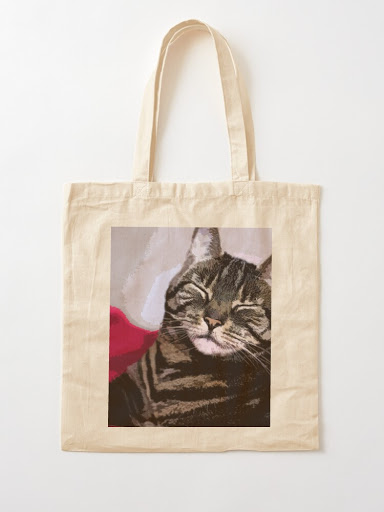 Cat-themed bag