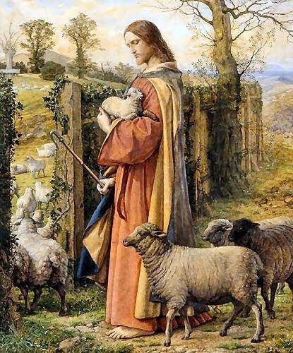 Resultado de imagem para JESUS E AS OVELHAS