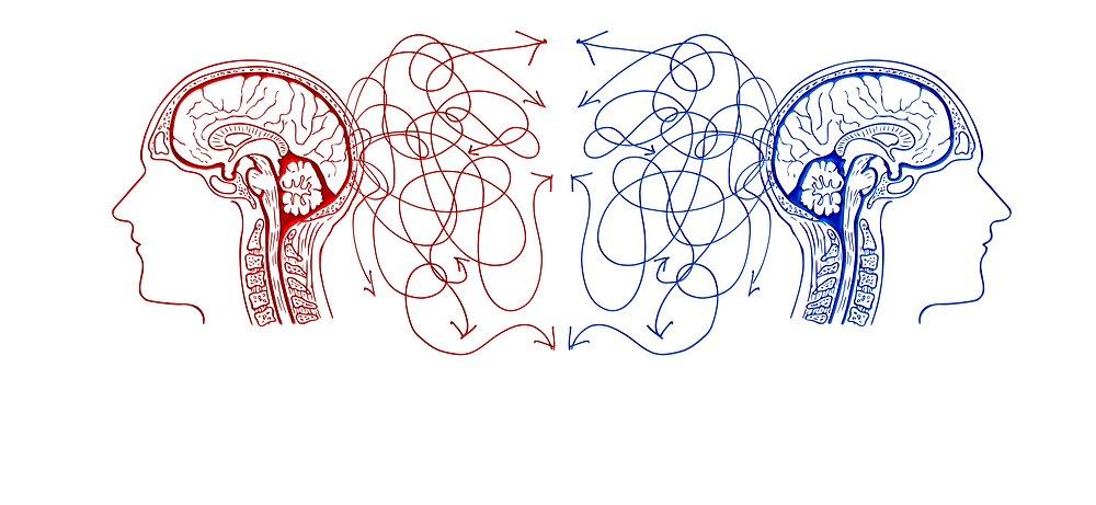 √Mengenal Perbedaan Cara Kerja Otak Manusia yaitu Otak ...