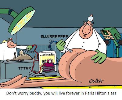Funny cartoons about Paris Hilton fat but