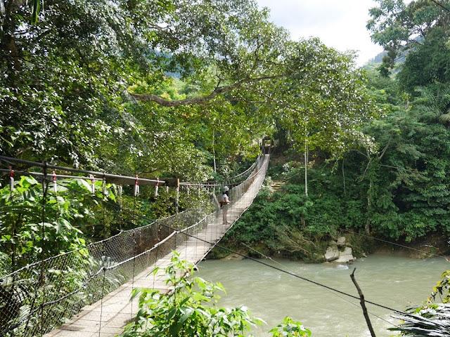 Jembatan yang ada di Tangkahan