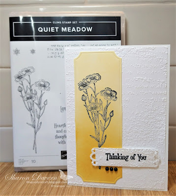 Rhapsody in craft, Crushed Curry, Quiet Meadow, Quiet Meadow Bundle, Quiet Meadow Dies, Thinking of you, Timeworn Type 3D Embossing Folder, Blending Brushes, Painted Label Dies, Stampin' Up!, #colourcreationsbloghop