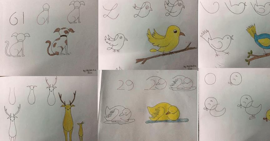 طرق سهلة لتعليم التلميذ رسم بعض الأشكال والحيوانات بالخطوات