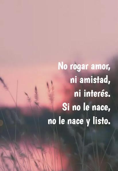 No-rogar-amor