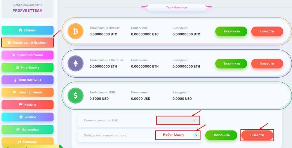 Вывод средств в Crypto Nati