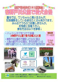 公園公式SNSで愛犬自慢投稿しよう!<募集7/1-8/31>