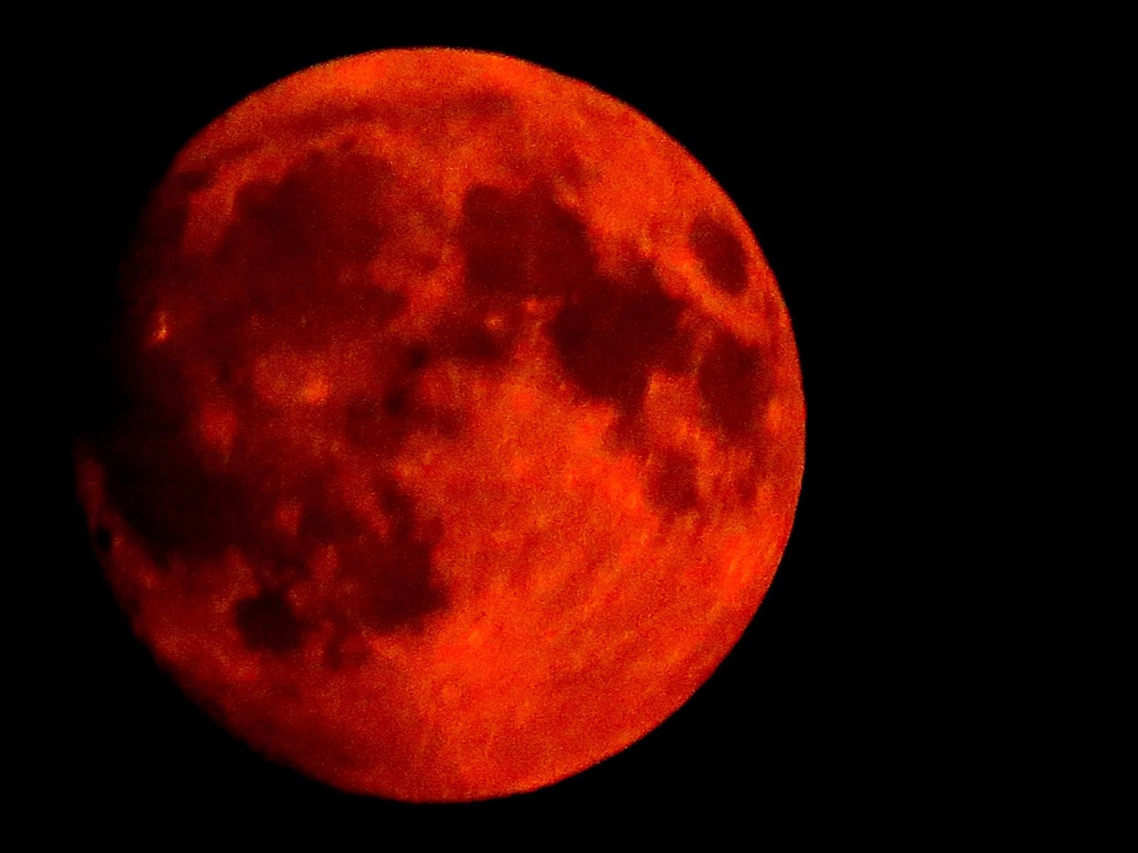 Blood Moons, Births, And Babies - UNSEALED - World News ...