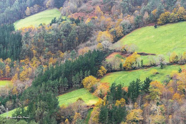 Bosques de Taramundi en otoño - Asturias