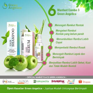 paket perawatan rambut rontok combo 3 green angelica