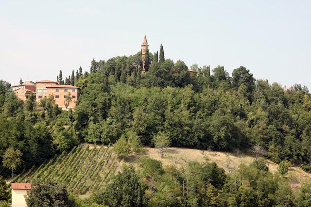 Bologna, Valsamoggia - Viinitarhoja ja koirahommia 10