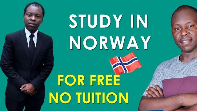 Study in Norway For Free and Visa Requirement for International Students