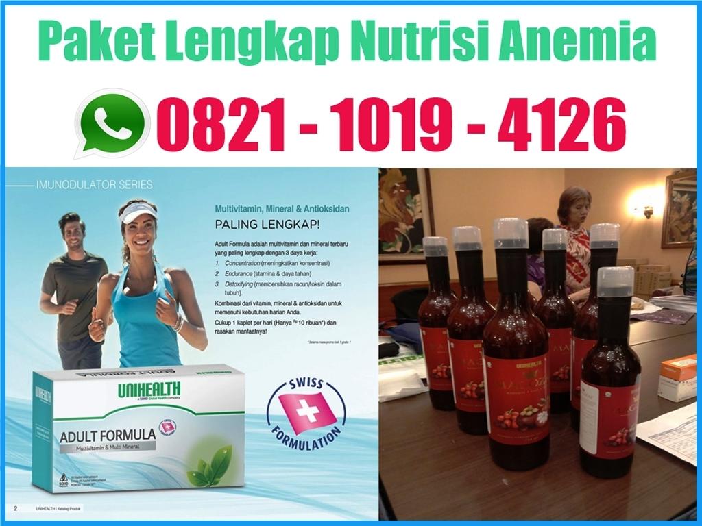 nutrisi anemia ibu hamil, nutrisi anemia remaja, nutrisi anemia anak