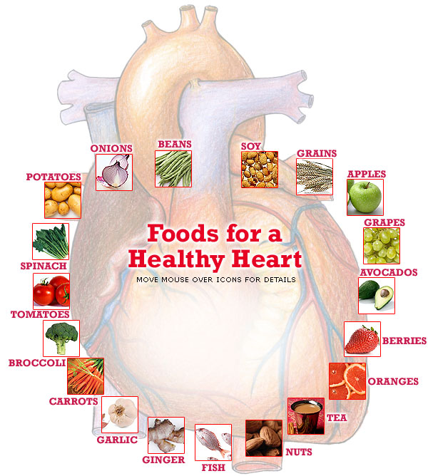 Dietary lignans: physiology and potential for cardiovascular disease risk reduction