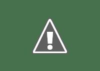 National reptile of India - King cobra