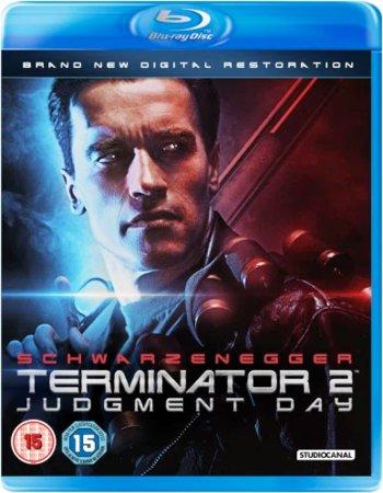 Terminator 2 Judgement Day 1991 Dual Audio 480p Bluray 500mb Ssr