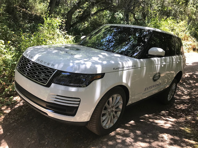 Front 3/4 view of 2019 Range Rover 3.0 liter TD6 Diesel