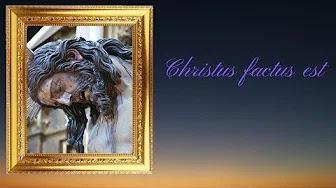 Reportaje fotográfico de la Hermandad del Descendimiento. Suena Christus Factus Est.