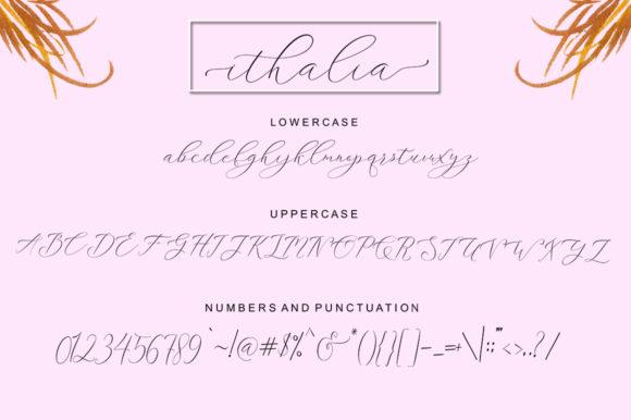 Ithalia Script Download Font Free
