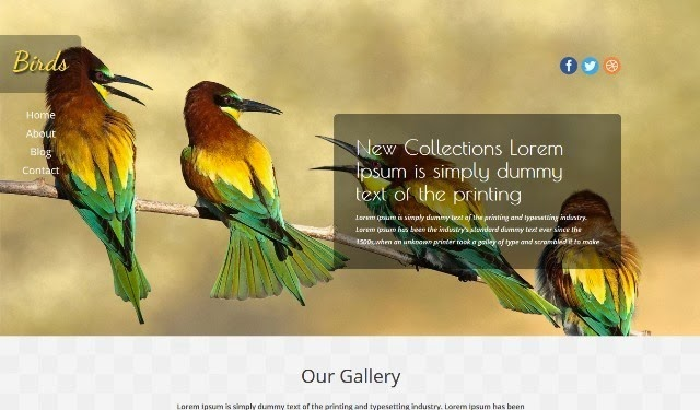 Birds - Free Html5 Template for Pets