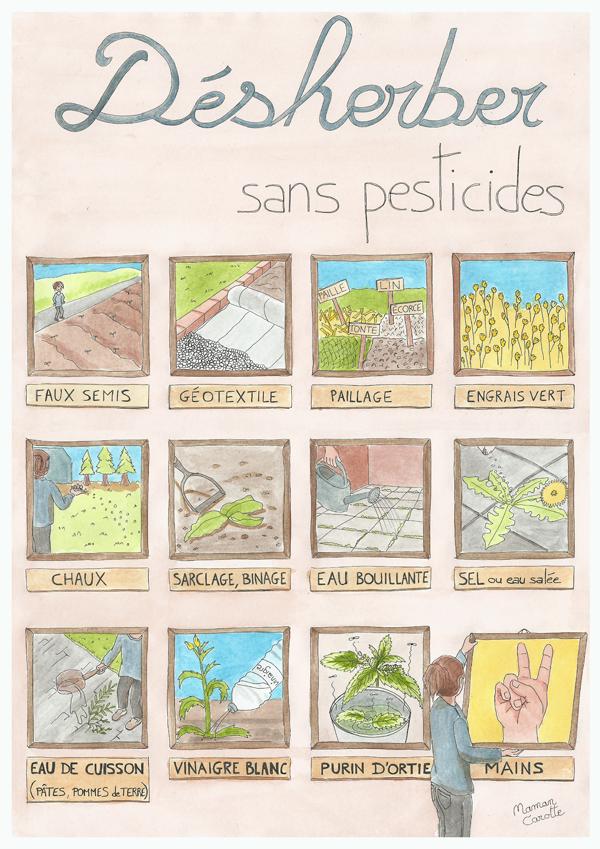 Méthodes naturelles pour supprimer les mauvaises herbes