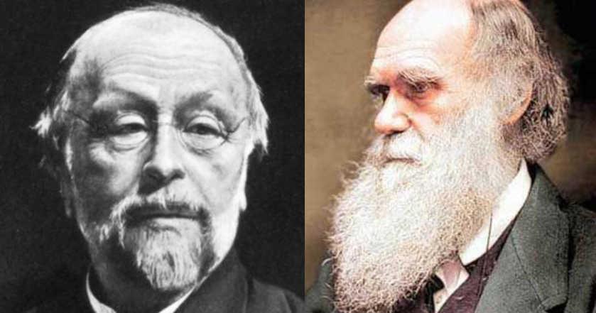 darwinismo social no Naturalismo