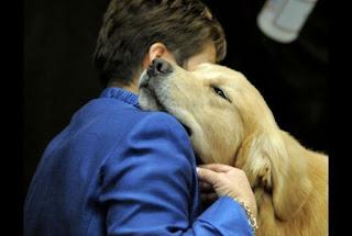 Δείτε τους 25 τρόπους που ο σκύλος σας... σου λέει σ'αγαπώ!