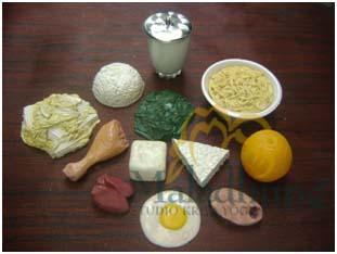 food model paket murah