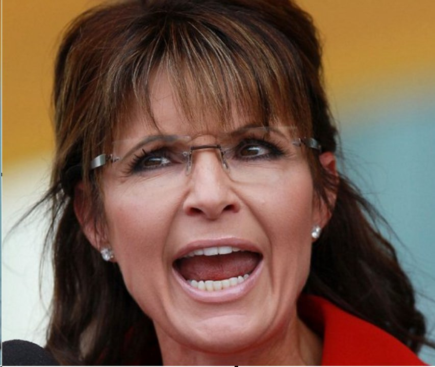 The immoral minority sarah palin it is a farce for Farcical person