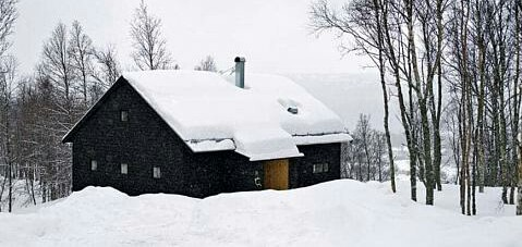 scandinavian homes exterior